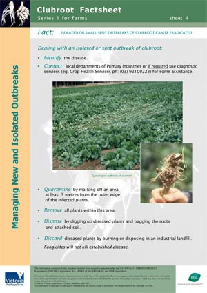 VG00044 Clubroot - Managing Outbreaks