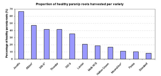 Comaprison of Parnip varieties with Health Roots
