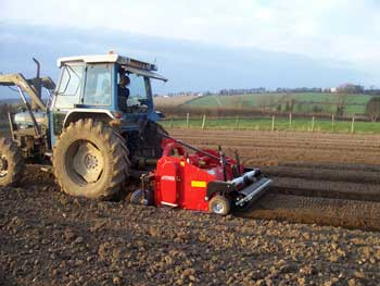 forming seedbed