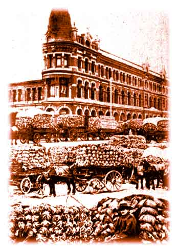 Flinders Street 1906