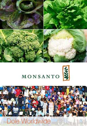 Monsanto-Dole plant breeding and marketing