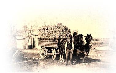 Cart loaded