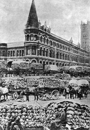 Veg to Sydney Flinders Street Station  ca. 1900